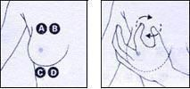 bigger breast massage techniques