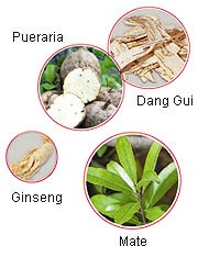breasts firming herbs-ginseng and dang guai