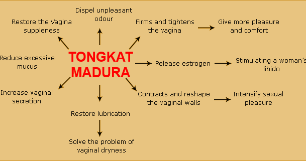 tongkat ajimat madura, herbal vagina tightening, virgin stick, ger rid of excessive vaginal discharge